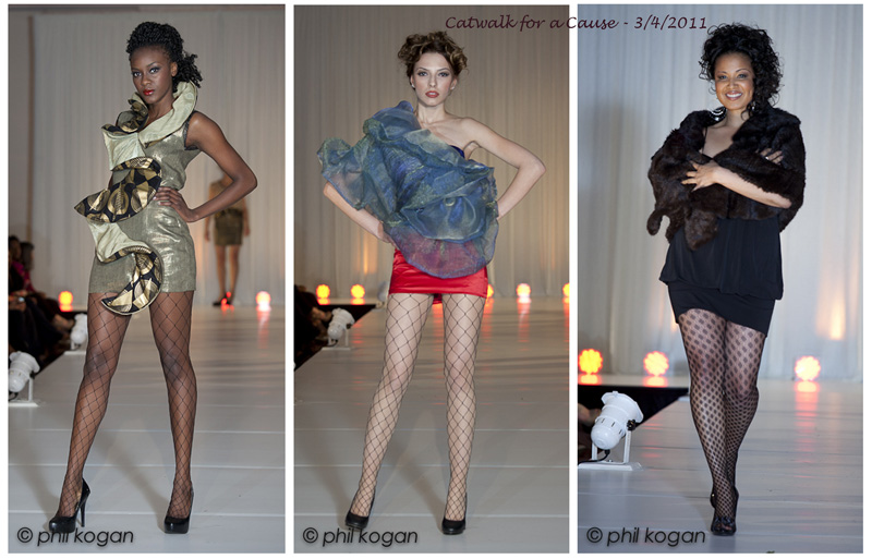 http://www.philkogan.com/wp-content/uploads/2012/11/catwalk-for-a-cause.jpg